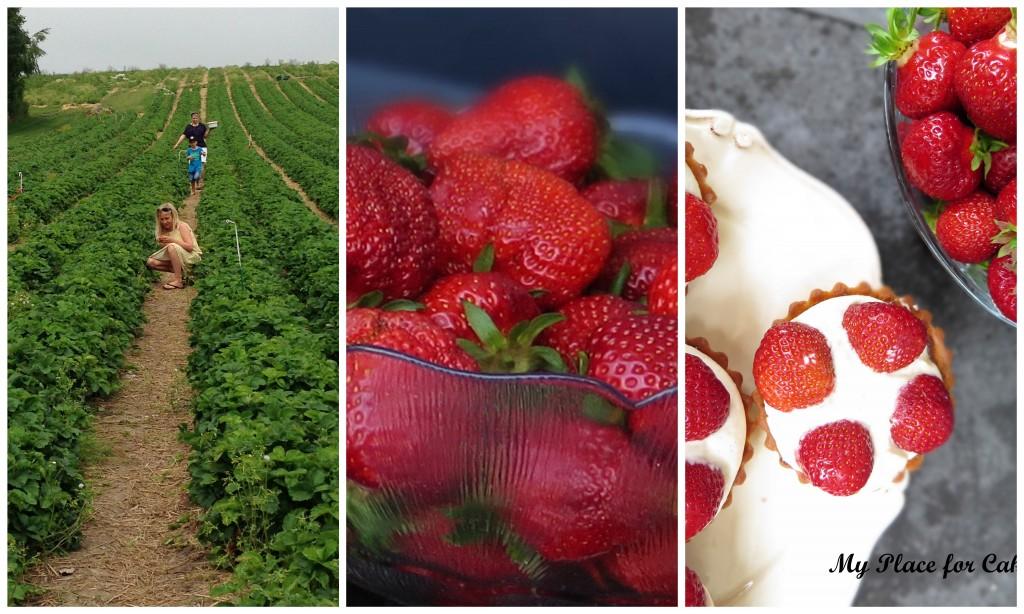 collage jordbærtærte